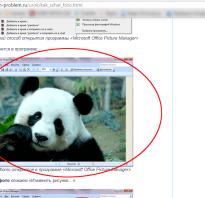 Как сохранить изображение через f12 в браузере. Сохранение любой картинки в Chrome, Opera, FireFox