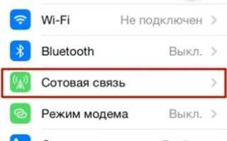 Как выключить 3g на iphone 5s?