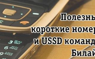 Как поменять тариф на Билайне с помощью звонка оператору, личного кабинета на сайте и USSD-запроса