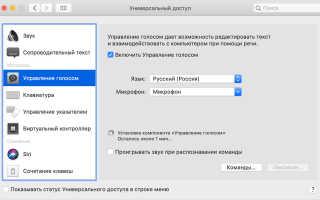 Как Включить Голосовой Ввод На Клавиатуре Google. Как текстовым способом давать команды Siri на Mac Как сделать цифровую клавиатуру